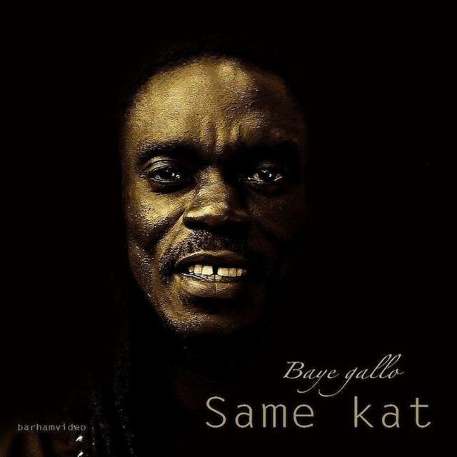 Same Kat