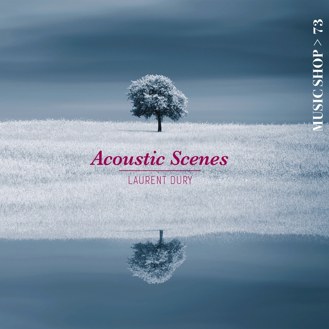 Acoustic Scenes