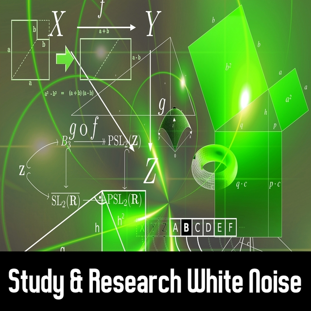 Study & Research White Noise
