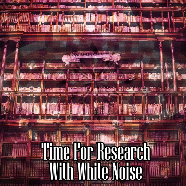 Time For Research With White Noise