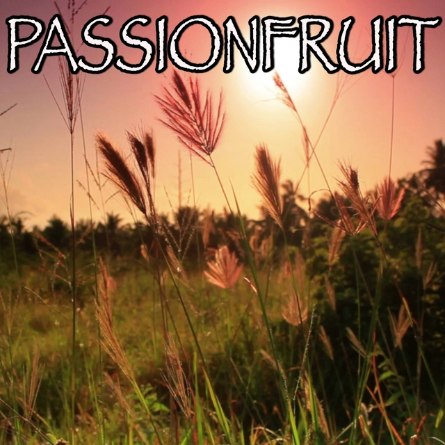 Passionfruit - Tribute to Drake