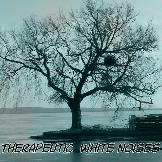 Therapeutic White Noises