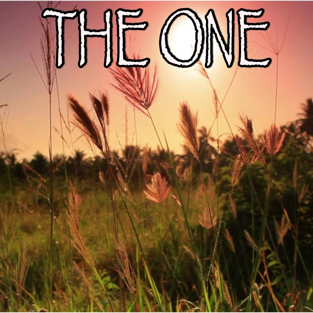 The One - Tribute to The Chainsmokers