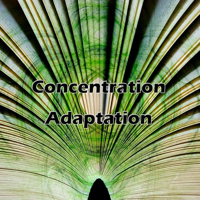 Concentration Adaptation
