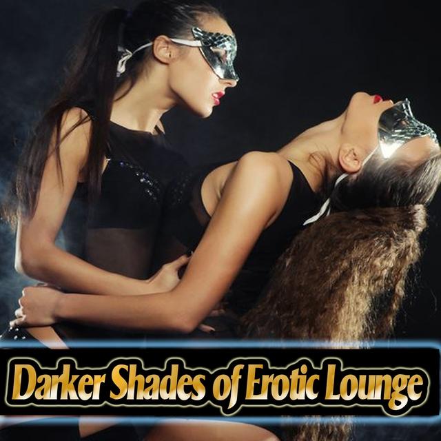 Couverture de Darker Shades of Erotic Lounge