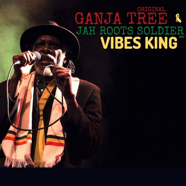 Vibes King