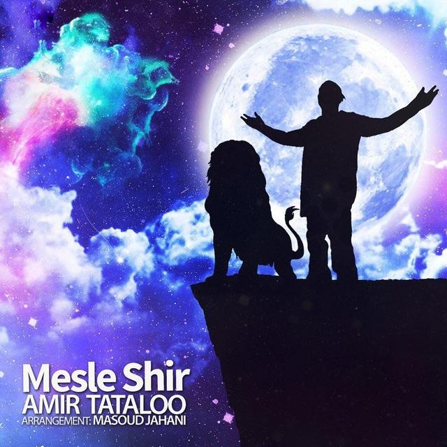 Mesle Shir