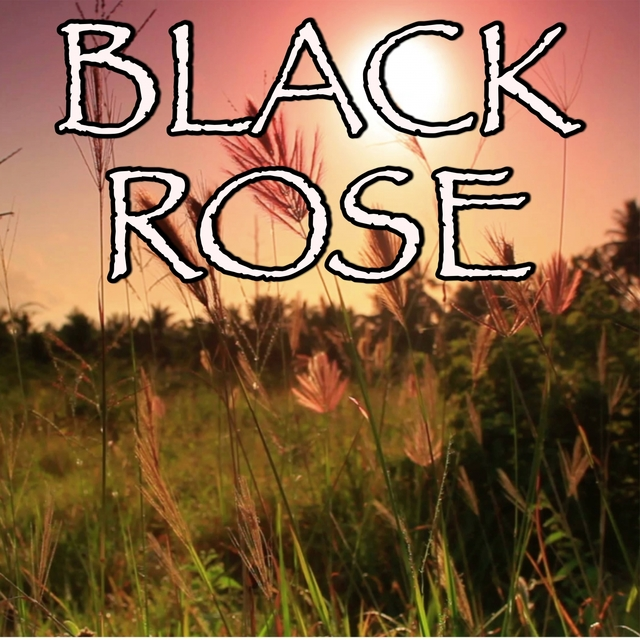 Black Rose - Tribute to Volbeat and Danko Jones
