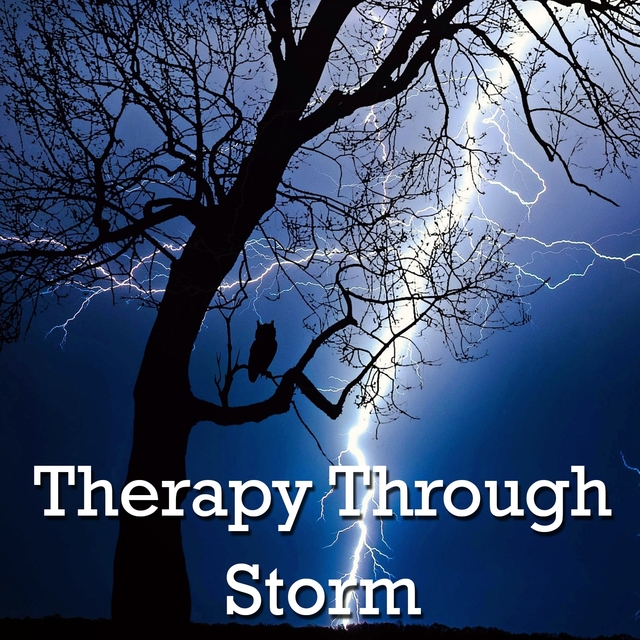 Therapy Through Storm