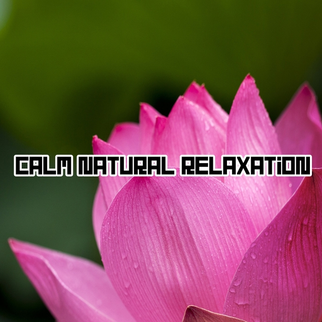Calm Natural Relaxation