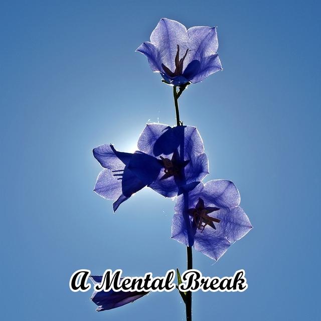 A Mental Break