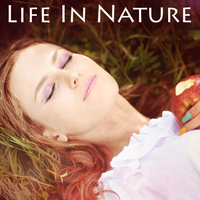 Life In Nature