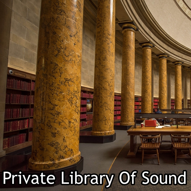 Private Library Of Sound
