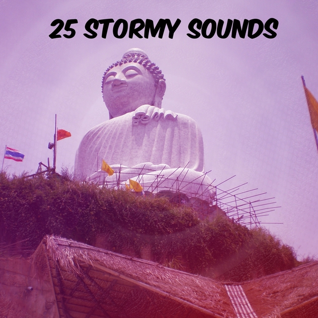 25 Stormy Sounds