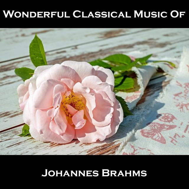 Wonderful Classical Music Of Johannes Brahms