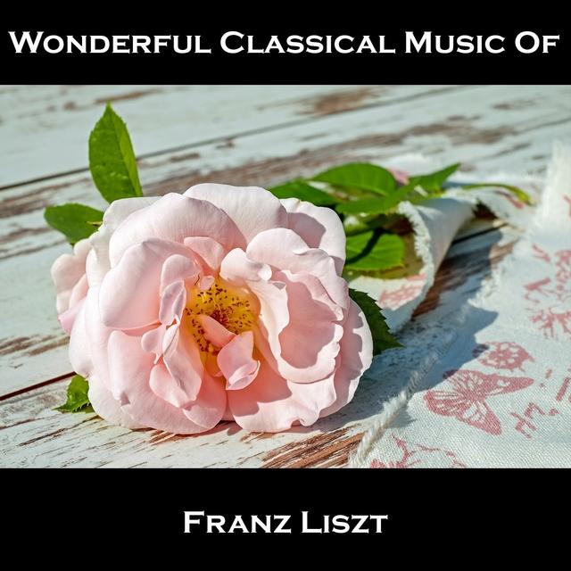 Wonderful Classical Music Of Franz Liszt