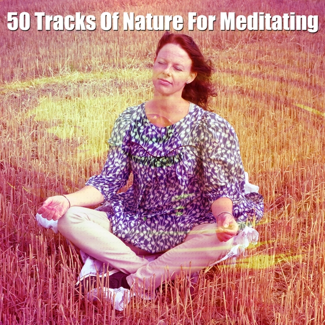 50 Tracks Of Nature For Meditating