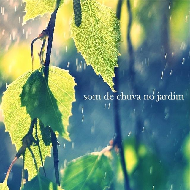 Som de Chuva no Jardim
