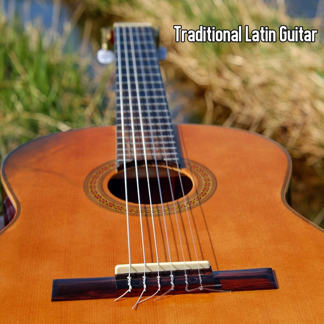 Traditional Latin Guitar