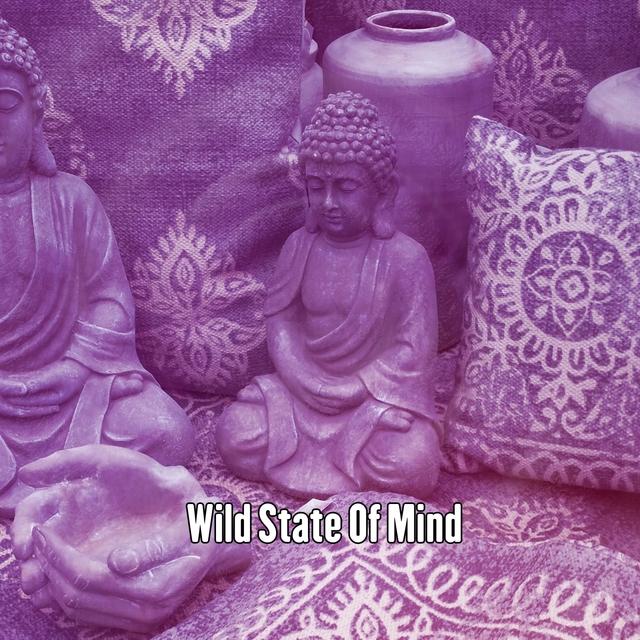 Wild State Of Mind