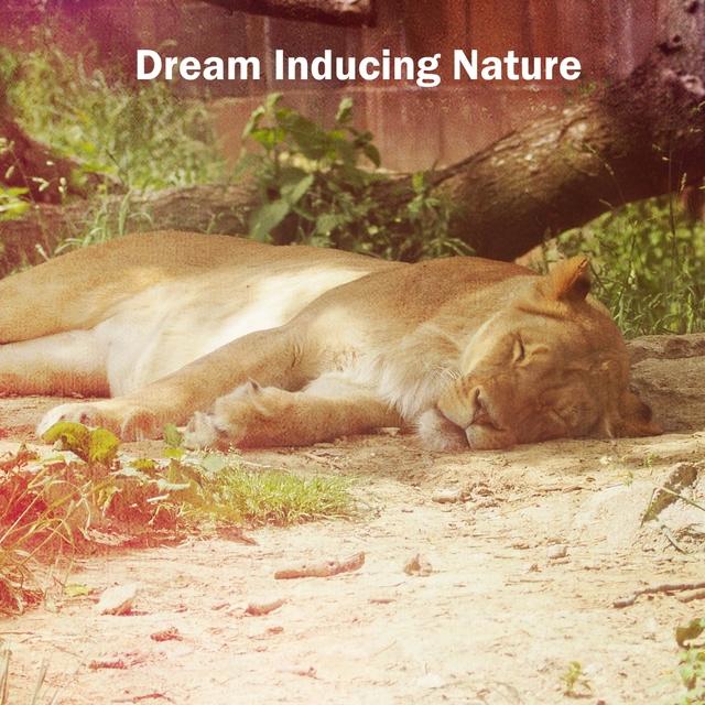Dream Inducing Nature