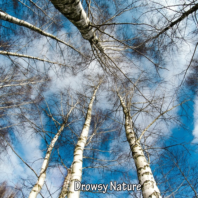 Drowsy Nature