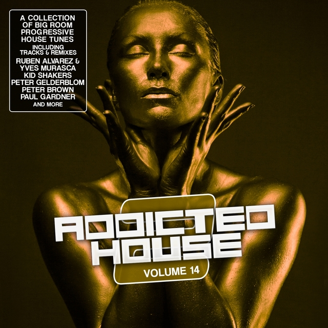 Addicted 2 House, Vol. 14