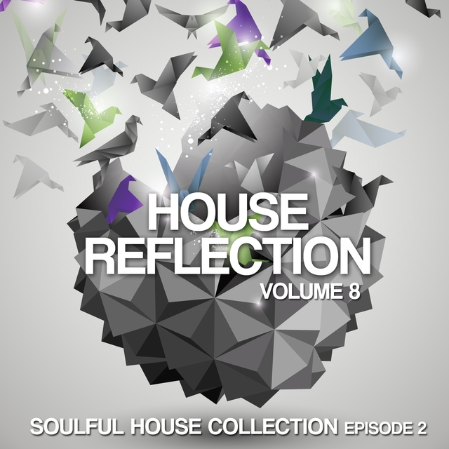 House Reflection, Vol. 8