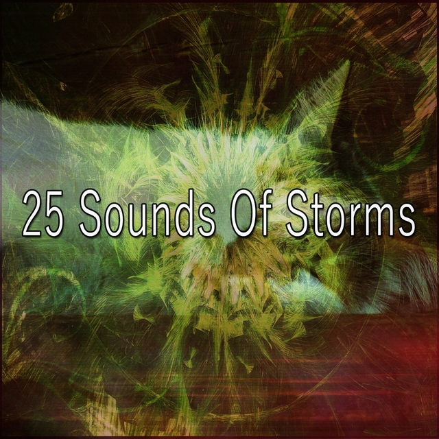 25 Sounds Of Storms
