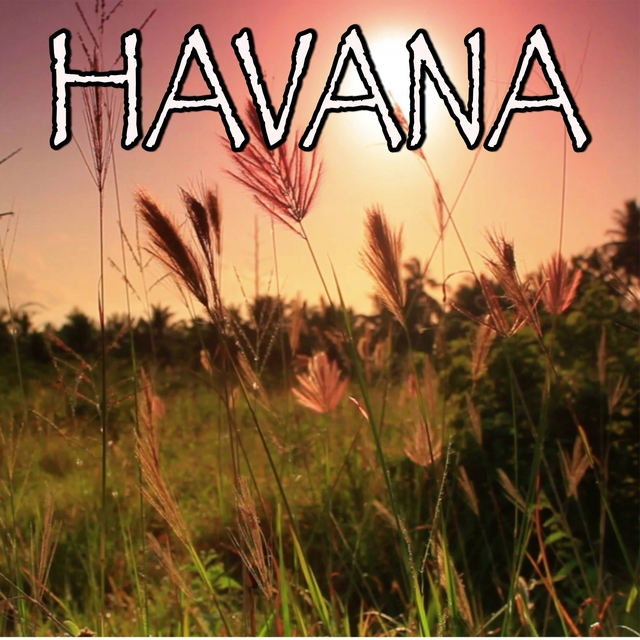 Havana - Tribute to Camila Cabello and Young Thug