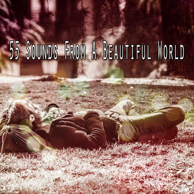 55 Sounds From A Beautiful World