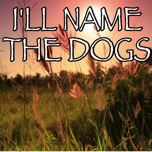 I'll Name The Dogs - Tribute to Blake Shelton