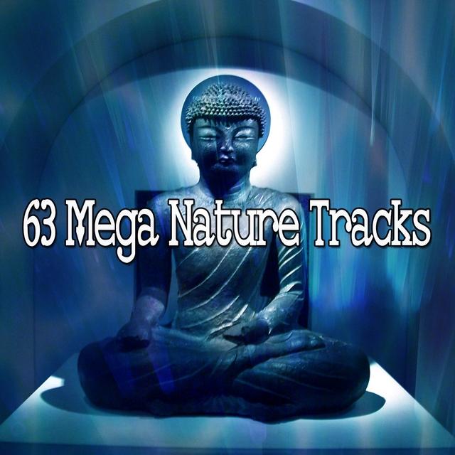 63 Mega Nature Tracks