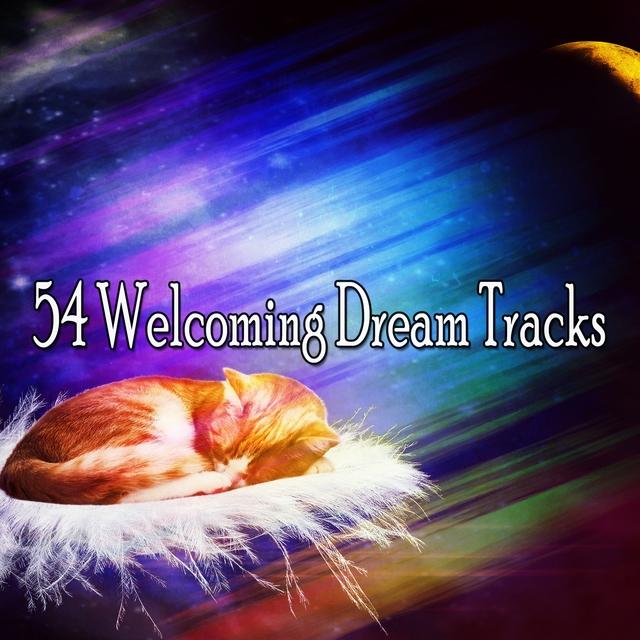 54 Welcoming Dream Tracks
