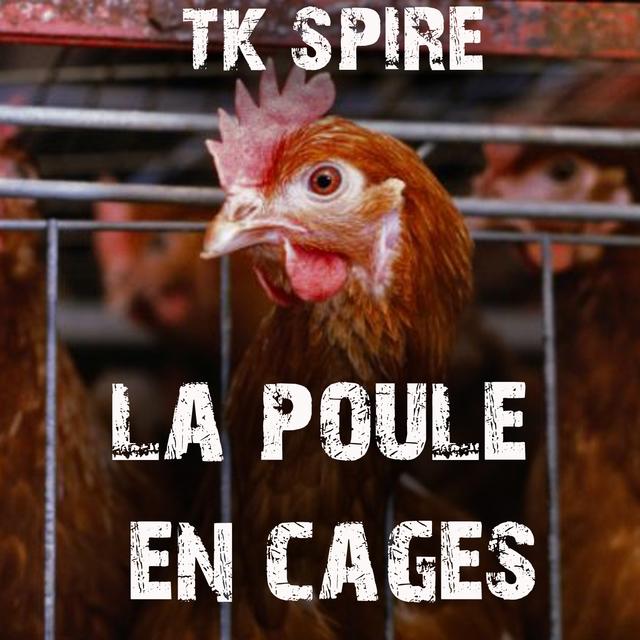 La Poule En Cages