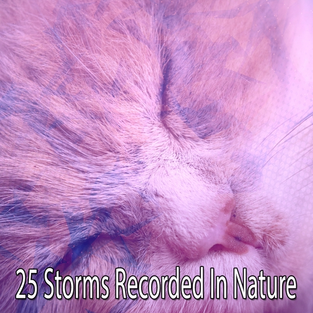 25 Storms Recorded In Nature