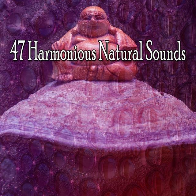 47 Harmonious Natural Sounds