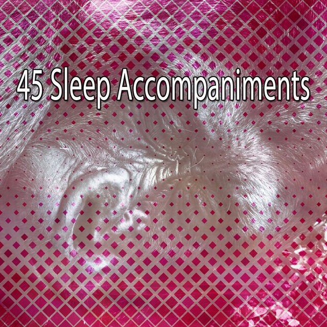 45 Sleep Accompaniments