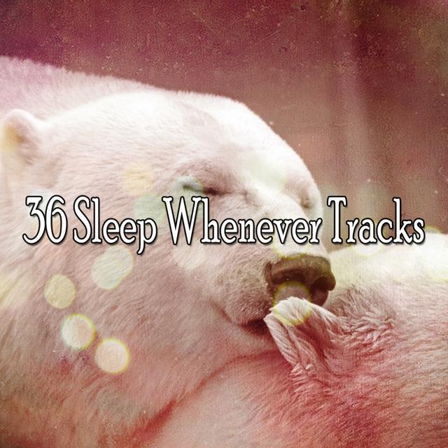 36 Sleep Whenever Tracks