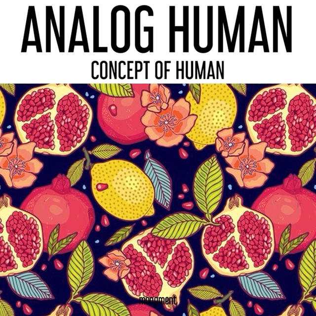 Concept Of Human