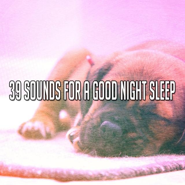 39 Sounds For A Good Night Sleep