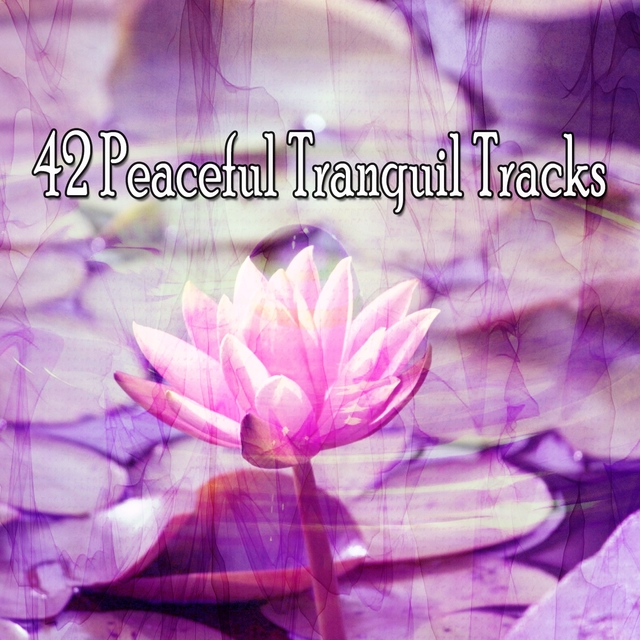 42 Peaceful Tranquil Tracks