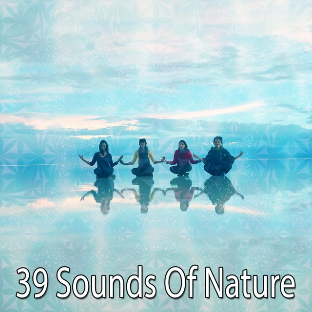 39 Sounds Of Nature