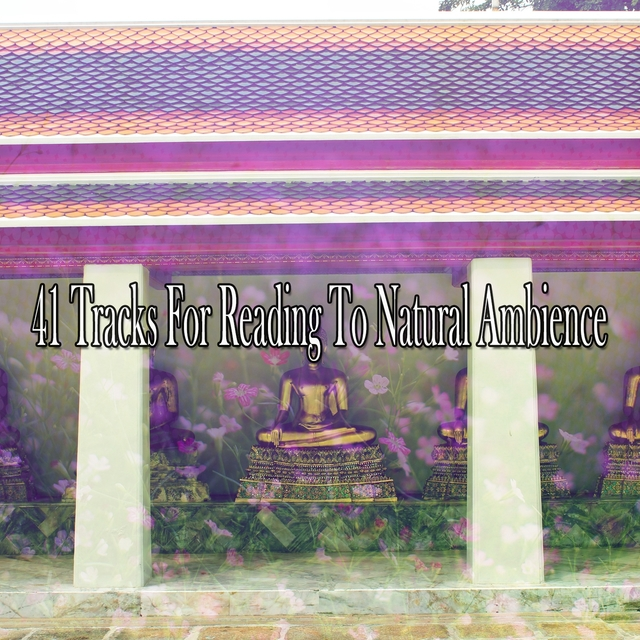 41 Tracks For Reading To Natural Ambience