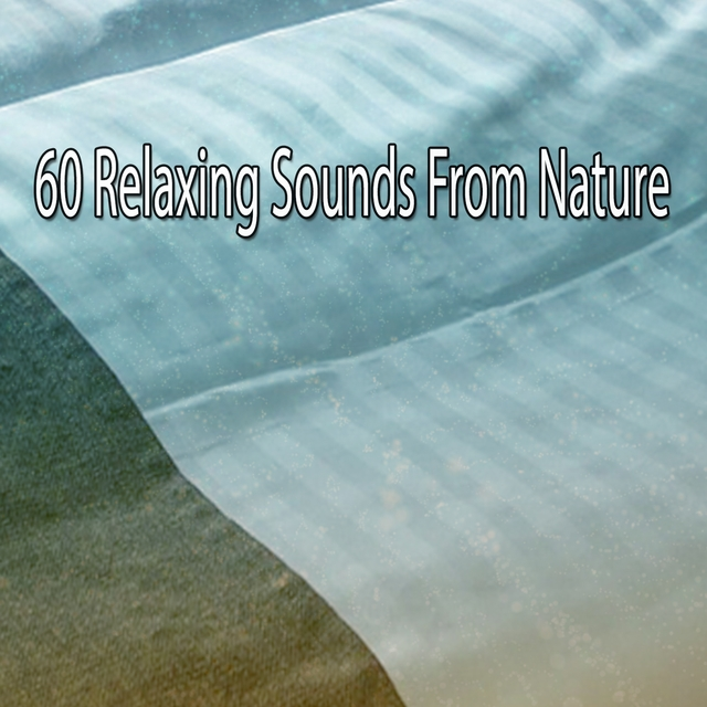 60 Relaxing Sounds From Nature