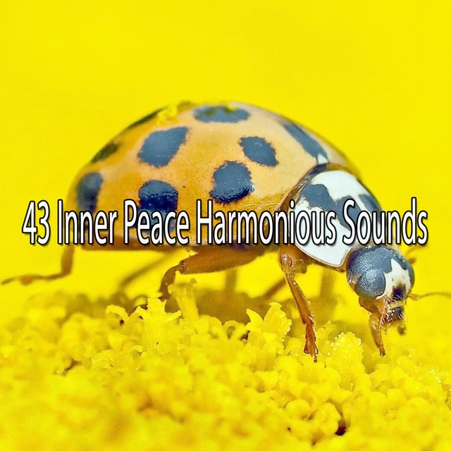 43 Inner Peace Harmonious Sounds