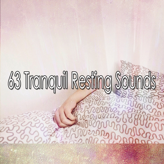 63 Tranquil Resting Sounds