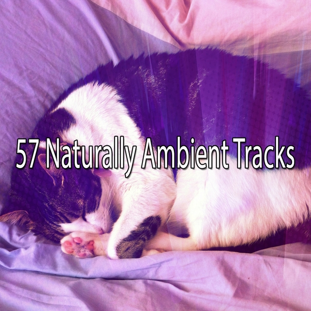 57 Naturally Ambient Tracks