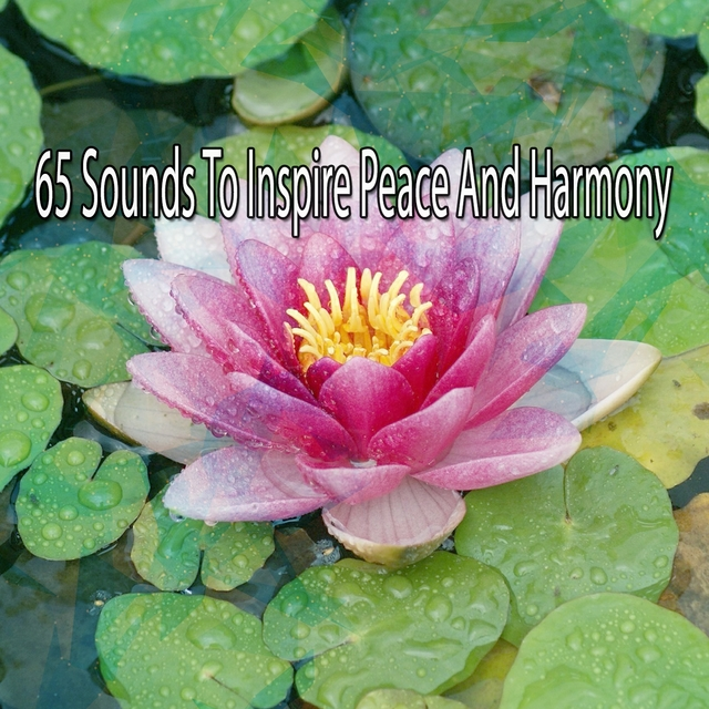 65 Sounds To Inspire Peace And Harmony