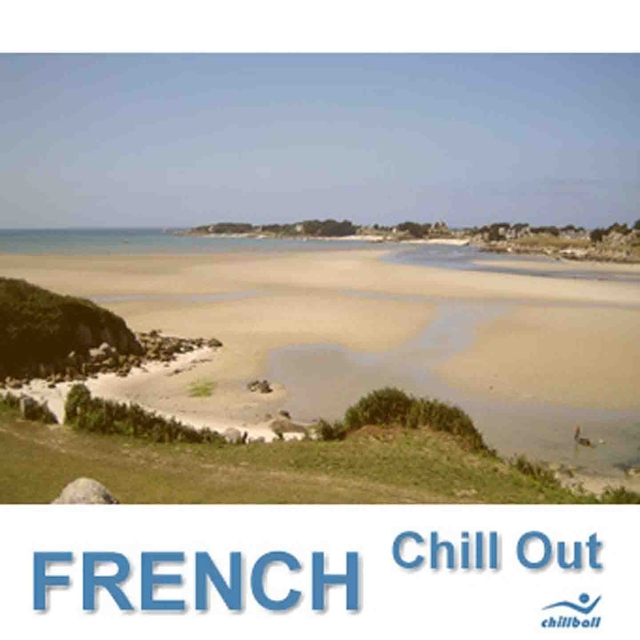 Couverture de French Chill Out, Selection 1